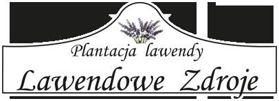 Lawendowe Zdroje - plantacja lawendy
